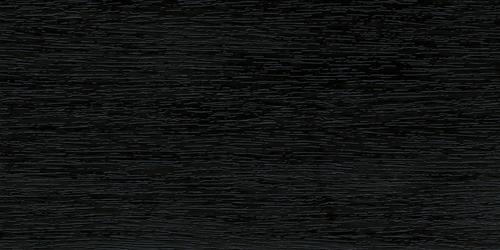 Roble Pantanoso Ref 015